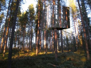 Treehouse in Sweeden is nearly invisible