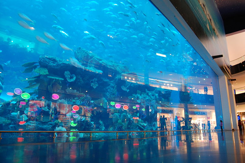 Dubai Aquarium and Under Water Zoo