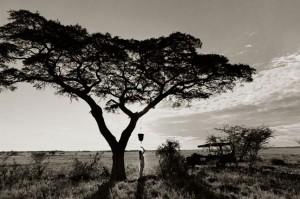 Botswana - Jack's Camp