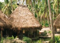 Fiji – Laucala Island